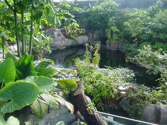randers regnskov åbningstider